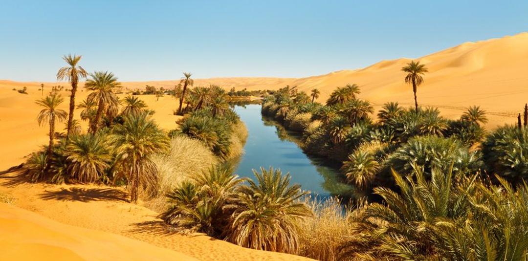 Il miraggio dell'acqua nelle oasi nel deserto