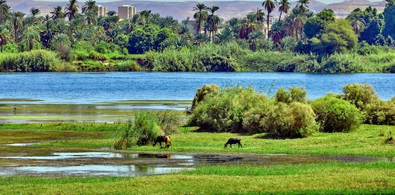 Gli Egizi, il Nilo e le irrigazioni