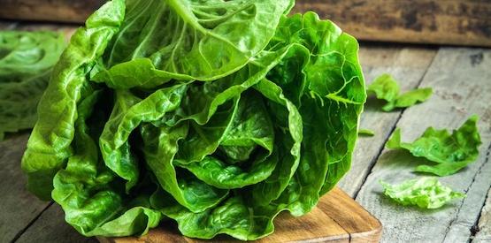 Sai quanta acqua c'è in una foglia di insalata?
