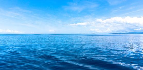Da dove viene l'acqua della Terra?